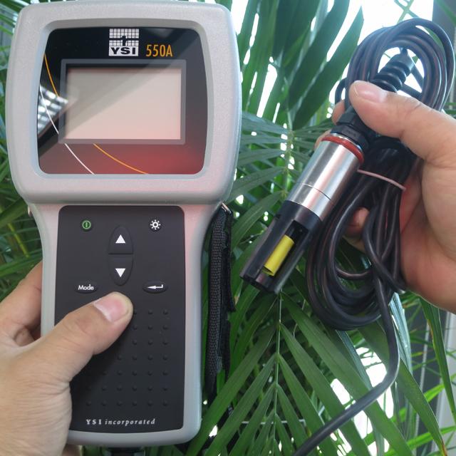 美国YSI 550A-12 便携式溶解氧测定仪,野外便携式溶氧仪,溶氧仪